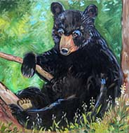Bear in the Woods by Suzanne Etienne
